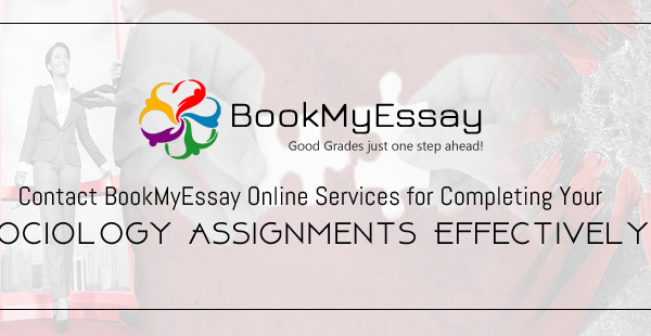 sociology assignment help