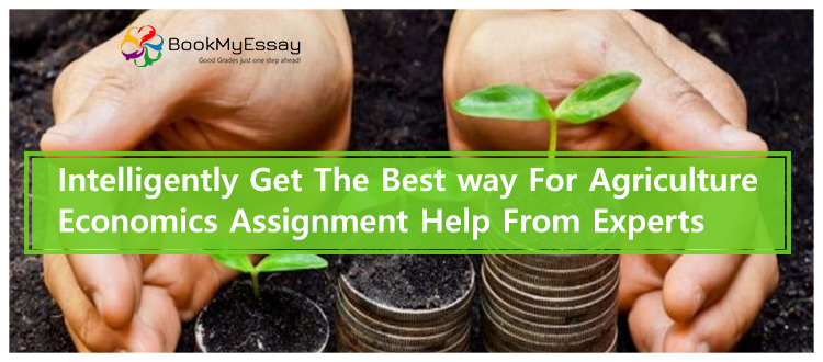 economics-assignment-help