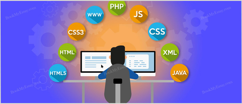 web-programming-assignment-writing